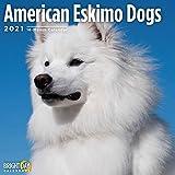 2021 American Eskimo Dogs Wall...