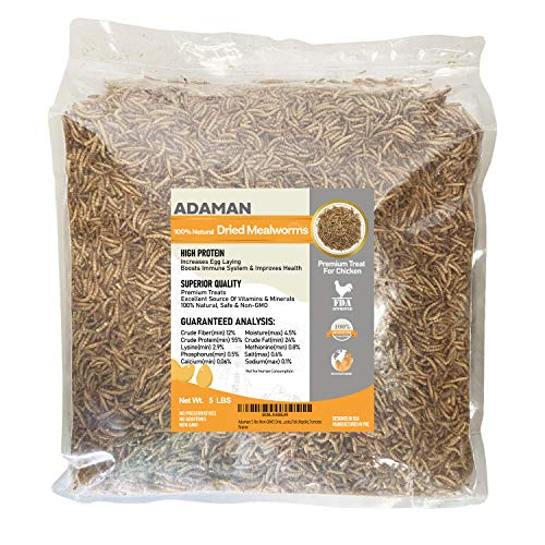Adaman Dried Mealworms -5 LBS- 100% Natural Non GMO High Protein Mealworms - Bulk Mealworms for Wild Birds, Chicken Treats, Hamster Food, Gecko Food, Turtle Food, Lizard Food