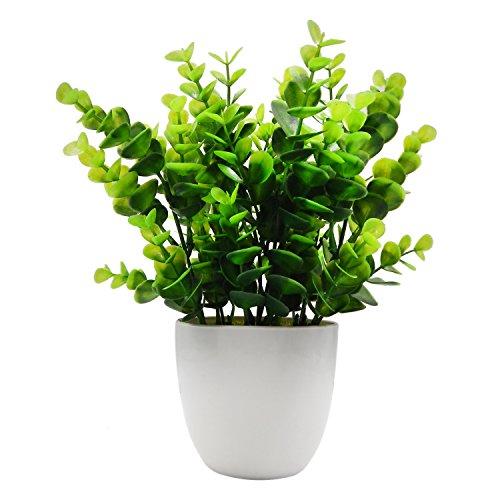 offidix Mini Kunststoff Eukalyptus Künstliche Pflanzen mit Vase für Schreibtisch, Home und Friends 'Geschenk Fake Anlage mit Plastik Töpfe für Home Dekoration (Grün)