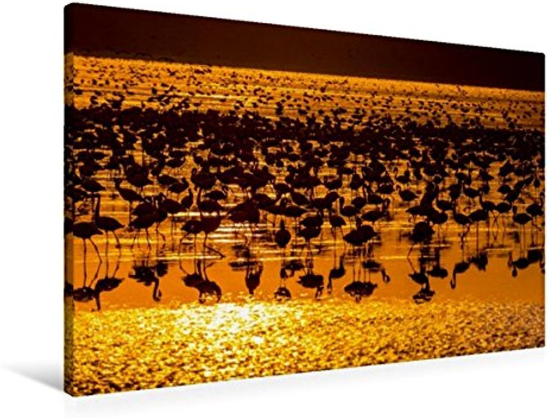 Calvendo Premium Textil-Leinwand 90 cm x 60 cm Quer, Flamingos   Wandbild, Bild auf Keilrahmen, Fertigbild auf Echter Leinwand, Leinwanddruck Tiere Tiere B01KXFK8V2 Kinder mögen    Lebendige Form