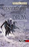 The Lone Drow - The Hunters Blades Trilogy Book 2