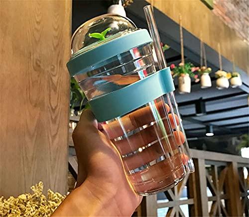 Botella De Agua Con Pajita, Taza De Café Helado, Taza De PláStico Reutilizable Para Adultos O NiñOs. (Azul, 480ml)