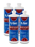 Rx Clear Algaecide 60 Plus | Non-Foaming Formula for Above Or In-Ground Swimming Pools | 60 Percent Poly-Algaecide | Keeping Algae in Suspension | One Quart Bottles | 4 Pack