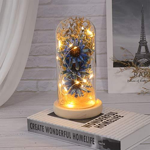 Mobestech - Girasol en una cúpula de cristal con luces LED, lámpara de mesa decorativa conservada como regalo floral para el día de la madre, aniversario de San