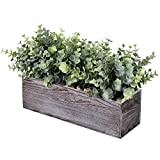 table centerpieces dining room - Faux Eucalyptus Plants in Rustic Rectangular Wood Planter Box Artificial Eucalyptus Greenery Arrangement Potted Plant in Dusty Green for Wedding Centerpiece Office Room Table Windowsill Décor