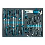 Hazet 163-141/31 Screwdriver set with tool tray insert (31 Piece)