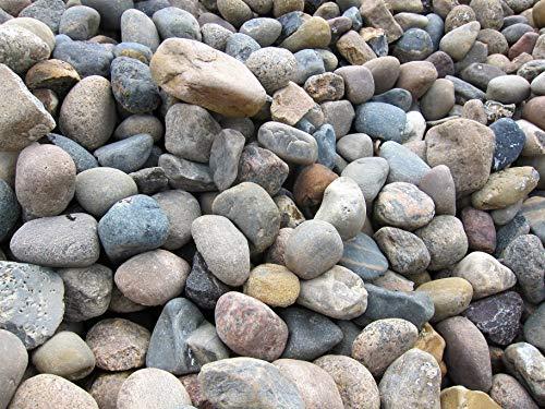 GABIONA Nordseekiesel Natursteine Bruch I Gabionen Steine zum Befüllen für Gabionenkörbe für die individuelle Gartengestaltung I Sichtschutz aus Stein Zaunelemente Säulen Ø (60-80 mm, 500 KG)