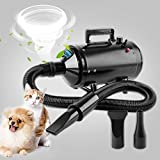 Wilktop 2400W Soffiatore per Cani, Asciuga Cani Professionale Pet Dog Drying velocità di Vento Regolabile Pet Dryer Low Noise (80dB) Cane Toelettatura Asciugacapelli Pet Dryer con 3 Ugelli (Nero)