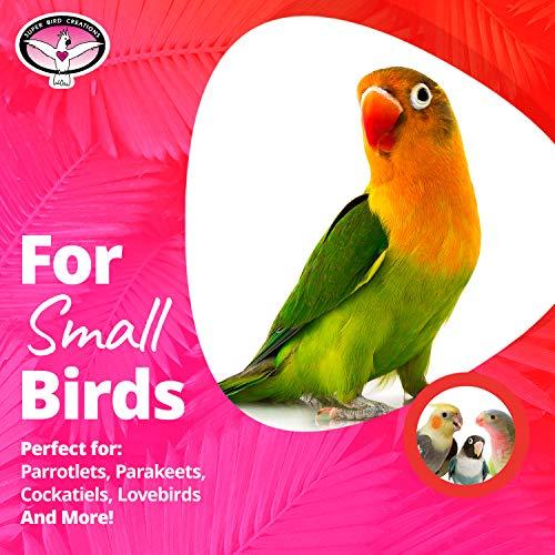 Super Bird Creations SB541 Crinkle Crinkle Little Star,Varies