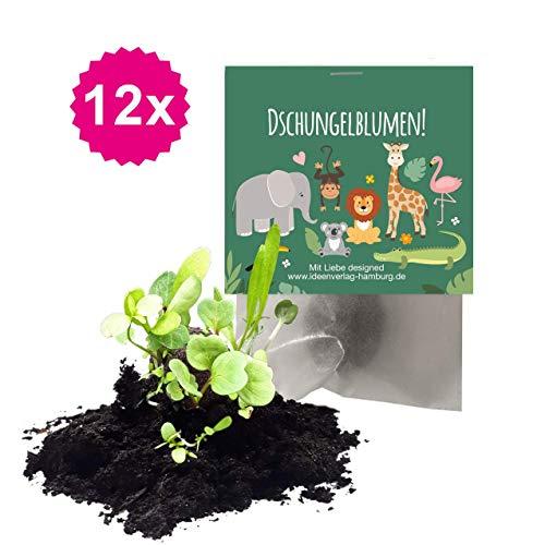 Ideenverlag 12x Dschungel/Zoo Samenbomben als Mitgebsel zum Kindergeburtstag / Seedbombs / Partytüten / Mitgebseltüten / Geschenktüten / Blumen / Give-aways / Geburtstag / Kinder / Saatkugeln