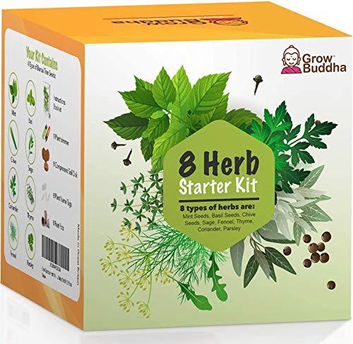 Cultive su propio kit de jardinería - Cultive fácilmente sus propias plantas con nuestro completo kit de inicio de semillas para principiantes - Idea de regalo única (Kit de 8 hierbas)