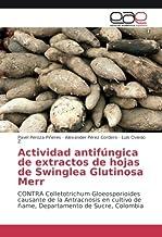 Actividad antifúngica de extractos de hojas de Swinglea Glutinosa Merr: CONTRA Colletotrichum Gloeosporioides causante de la Antracnosis en cultivo de ñame, Departamento de Sucre, Colombia