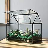 Large Glass Plant Terrarium – House Succulent Glass Terrarium Kit with Lip Glass Greenhouse Terrarium for Plant 12.26X9.15X10.9inch (Black 2)