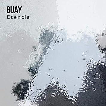 Guay Esencia, Vol. 1