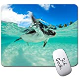 Baby Sea Turtle Swimming Mouse Pad,Customized Rectangle Non-Slip Rubber Gaming Mousepad Computer Mouse Pad Mat with Laptop Stickers