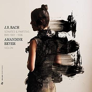 Bach: Sonates & Partitas, BWV 1001-1006