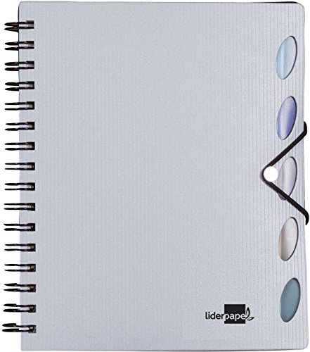 Liderpapel Cuaderno Espiral A5 Micro Executive Tapa Plástico 100H 80 g/m² Cuadro 5Mm 5 Separadores Con Gomilla Plata