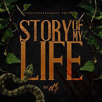 Story of My Life (Radio Edit)