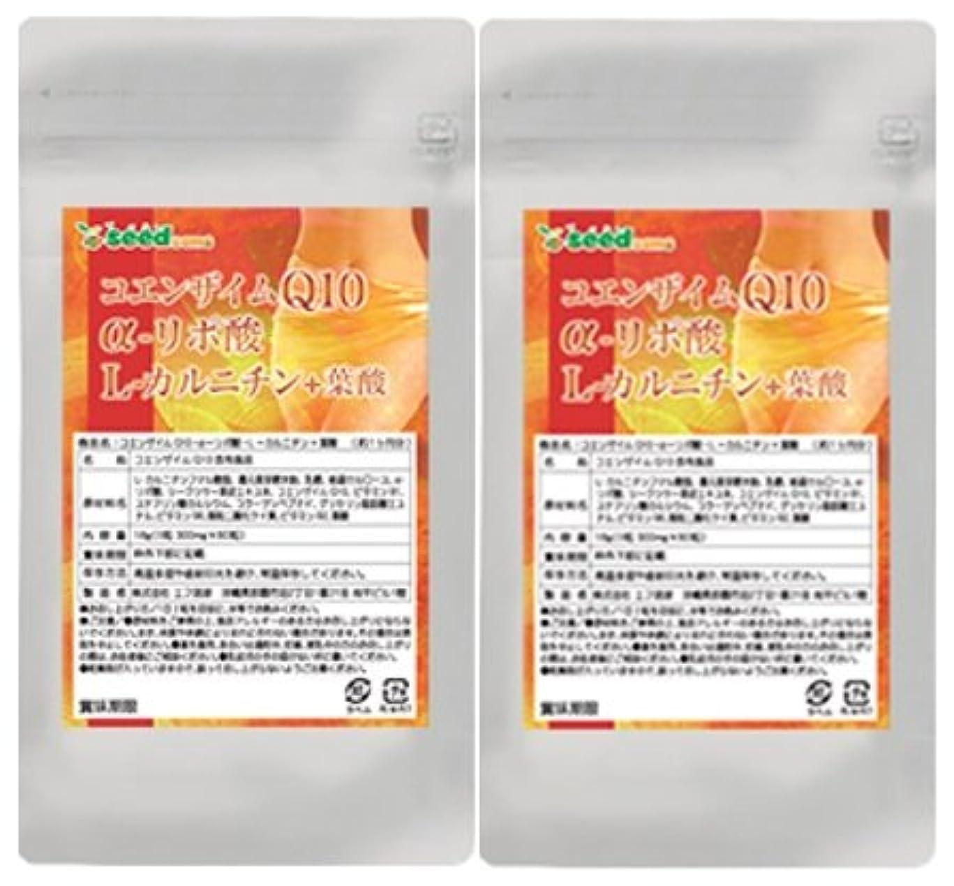 性能弾薬凶暴なコエンザイムQ10 α-リポ酸 L-カルニチン + 葉酸 (約6ヶ月分/360粒)