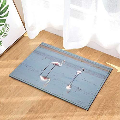 N-brand Alfombra de Puerta Alfombra Interior/Puerta de Entrada/Ducha Alfombras de Entrada de baño Alfombras Felpudo, Entradas de Piso, 40 x 60 cm.Flamingo En El Agua.