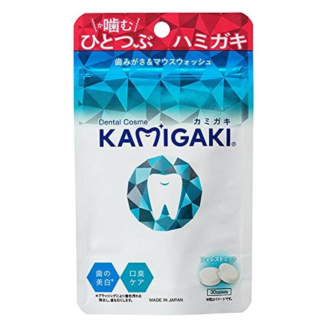 ハグより平らな形成KAMIGAKI(カミガキ)