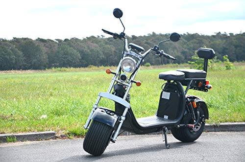 Elektro Scooter mit Straßenzulassung Coco Bike Fat E-Scooter bis zu 40 km/h schnell - 35km Reichweite, 60V | 1000W | 12AH Akku, Bremsen und Licht E-Scooter (Schwarz)