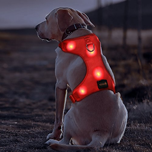 BSEEN LED Dog Harness USB Rechargeable LED Pets Walking Accessory Reflective LED Dog Safety Harness Soft Mesh Vest with Adjustable Belt Padded Lightweight Collar for Dogs Puppies Pets (Medium, Red)