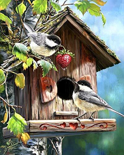 Adesiviamo Dipingi per Numero Kit - Casetta per Uccelli e Frutta DIY Adulti I Principianti dei Bambini usano pennelli e Vernice acrilica Pittura Decorazione della casa 40 x 50cm Senza Telaio