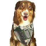 YAGEAD Pañuelo para Perros Cachorro y pañuelos para Mascotas, Alquiler de Autos Antiguos Retro Automóvil Automotriz Alquiler automotriz Texto Bufanda para Mascotas