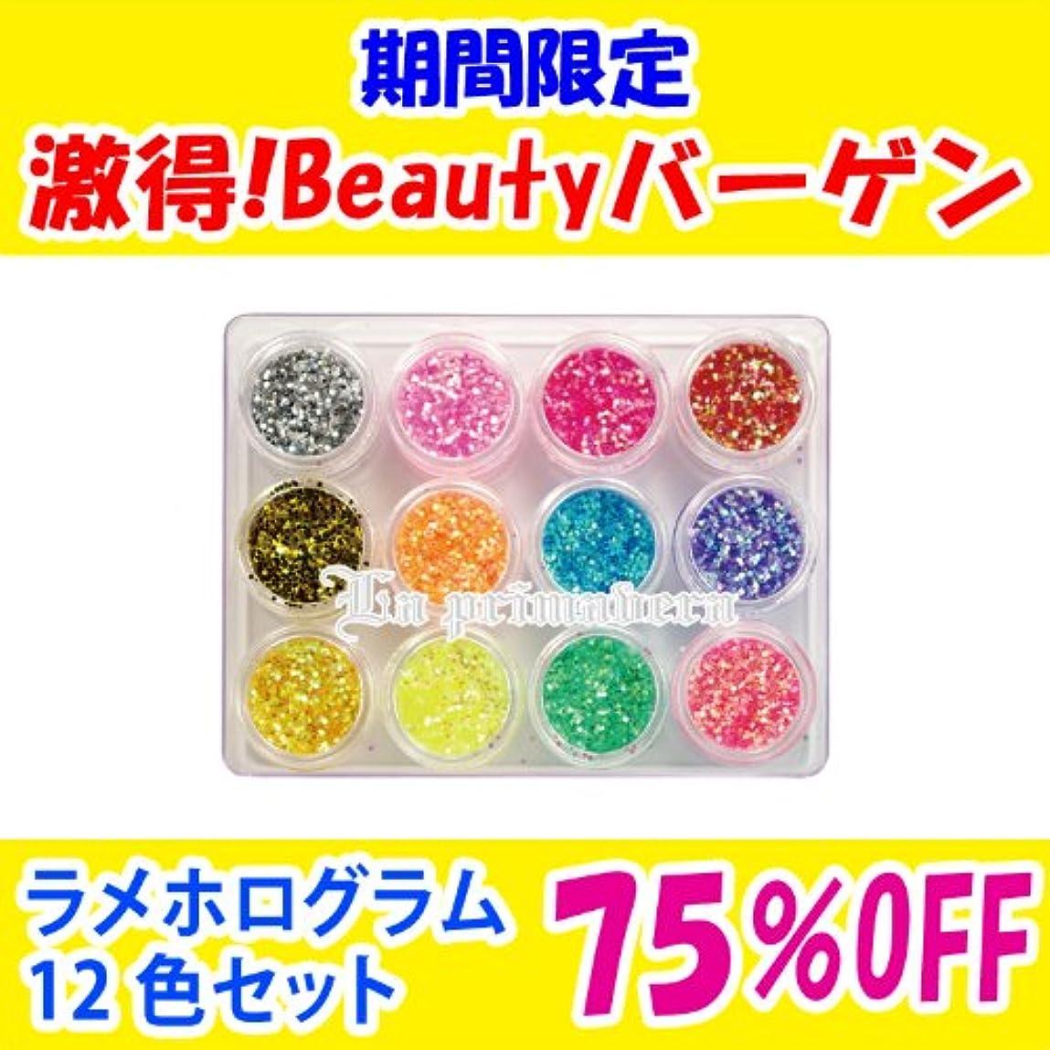 計算する剃るアンケートラメホログラム12色セット (sale-JH-set)