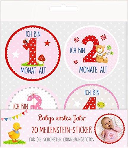 Meilenstein-Sticker - BabyGlück - Babys erstes Jahr (rosa): 20 Meilenstein-Sticker für die schönsten Erinnerungsfotos