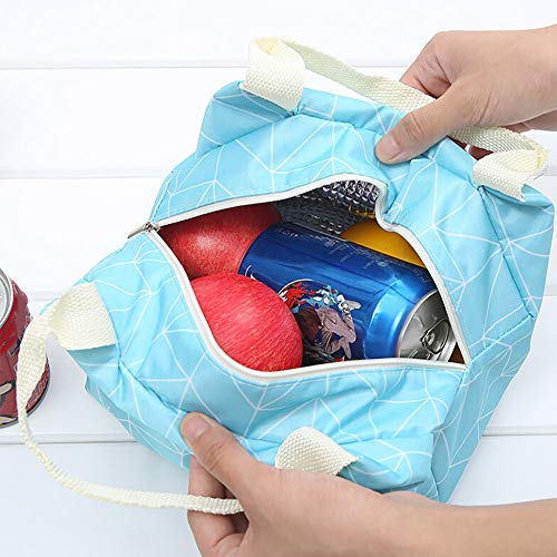 Pet1997 Insulated Cold Canvas Picnic Carry Case, Thermal Portable Lunch Bag For Women Kids (A)