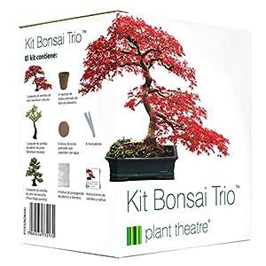 Plant Theatre Kit de tomate loco con 6 variedades extrañas y ...