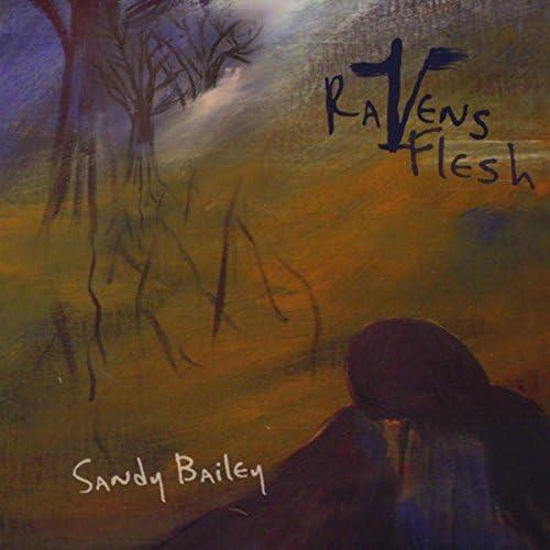 Sandy Bailey