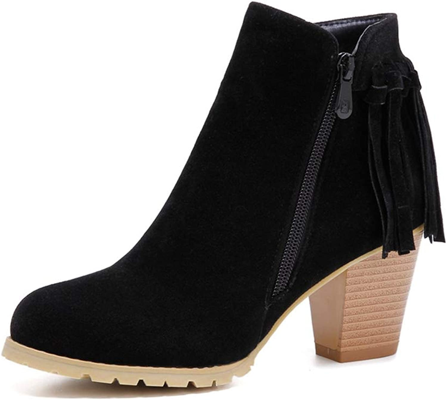 Hoxekle Women High Spike Heels Fringe Ankle Boots Leather Woman Winter Round Toe Thick Heel Short Plush Boot shoes