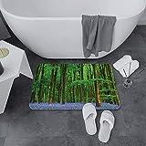 Alfombrilla de Baño Antideslizantes de 60X100 cm,Woodland Set, Spring Sunshine en A Bluebell ,Tapete para el Piso Lavable a Máquina con Microfibras Suaves Absorbentes de Agua para Bañera, Ducha y Baño