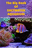 The Big Book Of Saltwater Aquarium: How To Care For And Keep Marine Fish And Corals: New Marine Aquarium Books (English Edition)