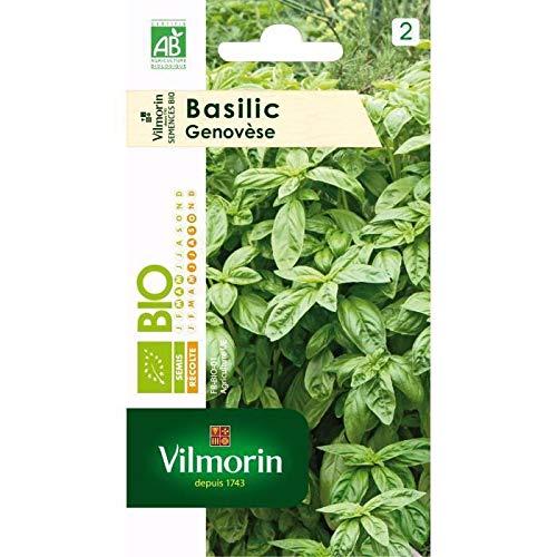 VILMORIN Sachet graines bio Basilic Genovese