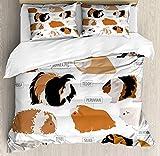 Set copripiumino maiale indiano, classificazione design infografico per tipi di razza roditore, set biancheria da letto decorativo con 3 federe, sabbia marrone ambra e