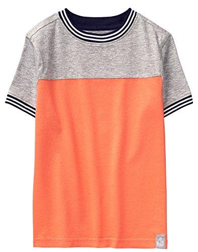 Gymboree Boys' Little Short Sleeve Colorblock Stripe Tee, Campfire, S