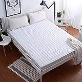 DGHJK Colchón Absorbente Lavable, colchón Plegable, colchón Fino Colchón Individual Doble para Dormitorio doméstico-E 120x200 cm (47x79 Pulgadas)