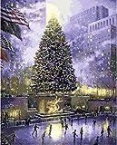 XIAOTAIZINAI Central Park of New York Pintura al óleo Imagen de Paisaje de EE. UU. por números Dibujo Digital Colorear Decoración de habitación Decoración-40 cm x 50 cm sin Marco