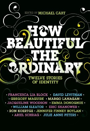 How Beautiful the Ordinary: Twelve Stories of Identity (English Edition)