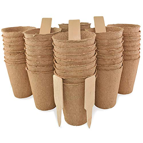 "Daniel's Plants 3"" Peat Pots   Plant Pots for Seedlings & Seed Starter Nursery Pots   Organic Biodegradable Plantable Pots   Eco Friendly   Bonus 10 Wooden Plant Garden Labels   Bulk 60 Pack   3 Inch"