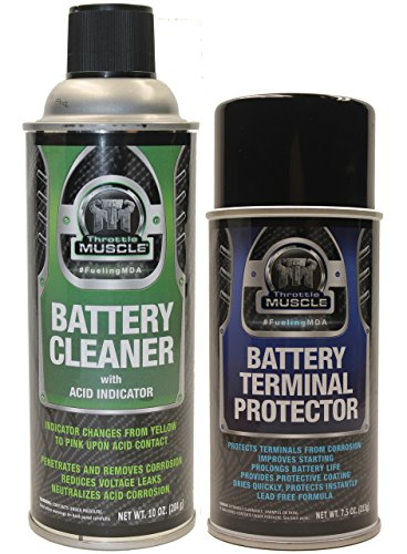 Throttle Muscle TM2548 - Battery Cleaner with Acid Indicator and Terminal Protector Package…