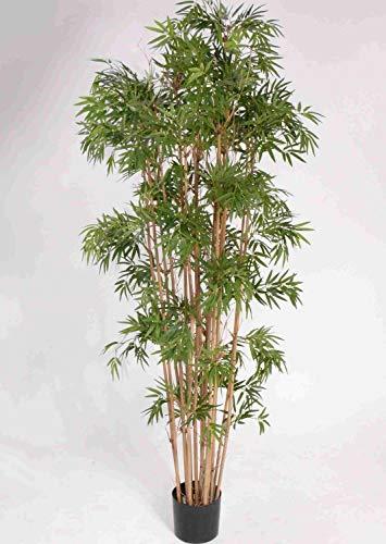 PARC Network - Deko Bambus, grün, 180 cm -Bambus künstliche Pflanzen - Bambus kunstbaum - dekobambus - Bambus Kunst - Plastik Bambus