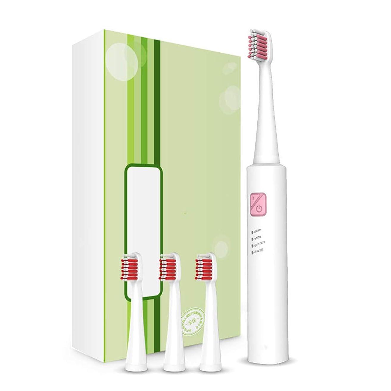 劇場堤防放つ電動歯ブラシ、超音波電動歯ブラシのスマートな歯ブラシを満たす大人の子供USB,A