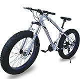 Fat Bike Bicicleta Todo Terreno Color Plata Riscko Deporte Ciclismo