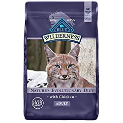 Best cat food for allergy