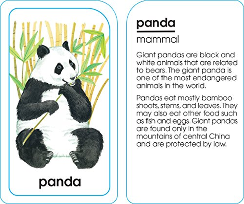 School Zone - Animals of All Kinds Flash Cards - Ages 4 and Up, Preschool, Kindergarten, Animal Names & Classes, Animal Facts and Information, Word-Picture Recognition, and More